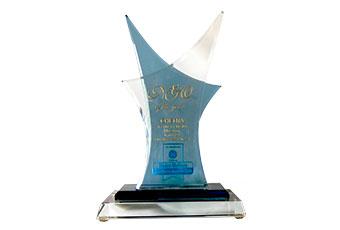 NGO of the year - CHETNA